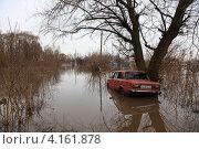 Наводнение (2012 год). Редакционное фото, фотограф Artem Chechkenev / Фотобанк Лори