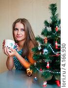 Купить «Портрет милой девушки с кружкой чая возле новогодней ёлки», эксклюзивное фото № 4166930, снято 5 января 2013 г. (c) Игорь Низов / Фотобанк Лори