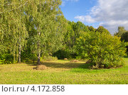 Купить «Осенний пейзаж со скошенной травой», эксклюзивное фото № 4172858, снято 1 сентября 2012 г. (c) Елена Коромыслова / Фотобанк Лори