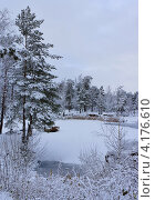 Первый снег. Стоковое фото, фотограф Виктор Карпов / Фотобанк Лори