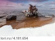Зимнее озеро. Стоковое фото, фотограф Игорь Иванов / Фотобанк Лори