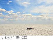 Купить «Очки на поверхности соляного озера», фото № 4184022, снято 11 июня 2011 г. (c) Курганов Александр / Фотобанк Лори