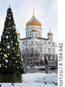 Купить «Зимний вид на Храм Христа Спасителя и Новогоднюю елку в Москве, Россия», фото № 4184642, снято 8 января 2013 г. (c) Николай Винокуров / Фотобанк Лори