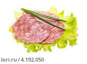 Купить «Колбаса с салатом и зеленым луком», фото № 4192050, снято 7 января 2013 г. (c) Андрей Старостин / Фотобанк Лори