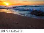 Купить «Вид на морской пляж и прибой в часы заката», фото № 4200618, снято 9 декабря 2012 г. (c) Николай Винокуров / Фотобанк Лори