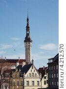 Городская ратуша. Таллин. Стоковое фото, фотограф Анатолий Баранов / Фотобанк Лори