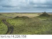 Шоколадные холмы. Стоковое фото, фотограф Denis Chernega / Фотобанк Лори