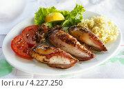 Купить «Фаршированные кальмары, приготовленные на гриле, с рисом, лимоном и помидорами», фото № 4227250, снято 23 июля 2012 г. (c) Федор Кондратенко / Фотобанк Лори