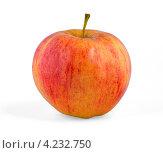 Красное яблоко на белом фоне. Стоковое фото, фотограф Михаил Голубев / Фотобанк Лори
