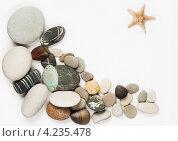 Галька и морская звезда. Стоковое фото, фотограф Сергей Лукин / Фотобанк Лори