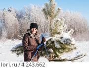 Женщина лыжница стоит возле сосны на фоне деревьев покрытых инеем (2013 год). Редакционное фото, фотограф Игорь Низов / Фотобанк Лори