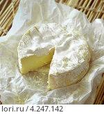 Купить «Круглый французский сыр камамбер в вощеной бумаге», фото № 4247142, снято 21 июля 2019 г. (c) Food And Drink Photos / Фотобанк Лори