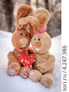 Влюбленные зайцы (2013 год). Редакционное фото, фотограф Anna Romashova / Фотобанк Лори
