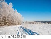 Купить «Зимний пейзаж. Лыжня, проходящая между полем и лесом», эксклюзивное фото № 4255298, снято 26 января 2013 г. (c) Игорь Низов / Фотобанк Лори