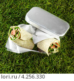 Купить «Лаваш с овощами для перекуса на свежем воздухе», фото № 4256330, снято 26 июня 2019 г. (c) Food And Drink Photos / Фотобанк Лори