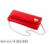 Купить «Красный кошелек», фото № 4262842, снято 25 января 2013 г. (c) Елена Силкова / Фотобанк Лори