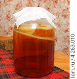 Купить «Чайный гриб в трехлитровой банке», эксклюзивное фото № 4263010, снято 4 февраля 2013 г. (c) Наталья Осипова / Фотобанк Лори