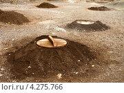 Купить «Ямы для приготовления пищи с использованием тепла геотермальных источников», фото № 4275766, снято 6 мая 2012 г. (c) Юлия Бабкина / Фотобанк Лори