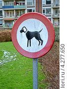 Купить «Выгул собак запрещен! табличка на столбе», фото № 4277650, снято 28 января 2013 г. (c) FMRU / Фотобанк Лори