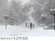 Купить «Снежная метель в городе», эксклюзивное фото № 4279926, снято 4 февраля 2013 г. (c) Дмитрий Неумоин / Фотобанк Лори