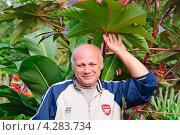 Довольный садовник стоит под листьями клещевины обыкновенной (Ricinus communis) (2012 год). Редакционное фото, фотограф Алёшина Оксана / Фотобанк Лори