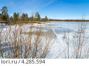 Купить «Весенний пейзаж», фото № 4285594, снято 12 апреля 2012 г. (c) Икан Леонид / Фотобанк Лори
