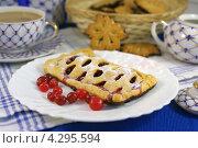 Купить «Пирожок с клюквой», фото № 4295594, снято 15 февраля 2013 г. (c) Natalya Sidorova / Фотобанк Лори