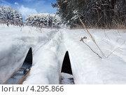 Лыжня зовёт. Стоковое фото, фотограф Александр Романов / Фотобанк Лори