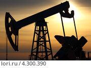 Купить «Добыча нефти. Нефтяная качалка, закат», фото № 4300390, снято 9 декабря 2012 г. (c) Mikhail Erguine / Фотобанк Лори