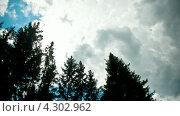 Купить «Облака над лесом», видеоролик № 4302962, снято 18 февраля 2013 г. (c) Алексей Мальков / Фотобанк Лори