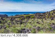 Каменистый морской берег, остров Сан-Мигель (2012 год). Стоковое фото, фотограф Роман Сулла / Фотобанк Лори