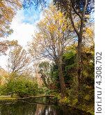 Ботанический сад на Азорских островха, остров Сан Мигель (2012 год). Стоковое фото, фотограф Роман Сулла / Фотобанк Лори