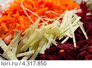 Купить «Нарезанные овощи для борща», фото № 4317850, снято 8 февраля 2013 г. (c) Morgenstjerne / Фотобанк Лори