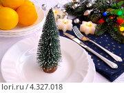 Купить «Новогоднее оформление праздничного стола», эксклюзивное фото № 4327018, снято 17 января 2013 г. (c) Blekcat / Фотобанк Лори
