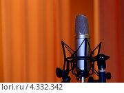 Микрофон. Стоковое фото, фотограф Дмитрий Хорошун / Фотобанк Лори