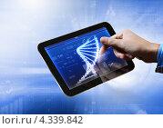 Купить «Мужская рука нажимает указательным пальцем на изображение молекулы ДНК на планшете», фото № 4339842, снято 20 января 2020 г. (c) Sergey Nivens / Фотобанк Лори