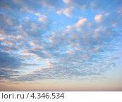 Купить «Небо в легких облаках на рассвете», фото № 4346534, снято 1 июля 2007 г. (c) Антонина Ращинская / Фотобанк Лори