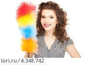 Купить «Очаровательная домохозяйка с метелкой для пыли», фото № 4348742, снято 3 января 2010 г. (c) Syda Productions / Фотобанк Лори