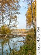 Лесное озеро. Стоковое фото, фотограф Дмитрий Кочерыгин / Фотобанк Лори