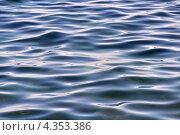 Купить «Легкое волнение на поверхности Черного моря», фото № 4353386, снято 1 сентября 2012 г. (c) Владимир Сергеев / Фотобанк Лори
