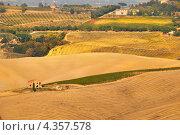 Купить «Тоскана, Италия: сельский пейзаж», фото № 4357578, снято 13 октября 2011 г. (c) Дмитрий Яковлев / Фотобанк Лори