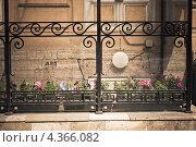 Весеннее крыльцо (2012 год). Стоковое фото, фотограф Алёна Ломухина / Фотобанк Лори