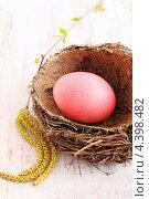 Купить «Красное яйцо в гнезде», фото № 4398482, снято 11 апреля 2012 г. (c) Юлия Маливанчук / Фотобанк Лори