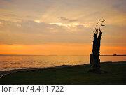 Рассвет над Онежском озере (2012 год). Редакционное фото, фотограф Олег Соловьев / Фотобанк Лори