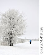 Женщина на лыжах после снегопада. Стоковое фото, фотограф Андрей Горшков / Фотобанк Лори