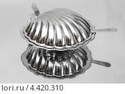 Металлическая посуда для икры в виде ракушки. Стоковое фото, фотограф Александр Дубровский / Фотобанк Лори