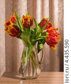 Букет тюльпанов в графине на фоне штор. Стоковое фото, фотограф Наталья Двухимённая / Фотобанк Лори