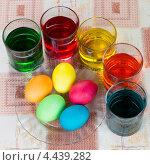 Купить «Окраска яиц на праздник Пасхи», фото № 4439282, снято 24 марта 2013 г. (c) Сергей Лаврентьев / Фотобанк Лори