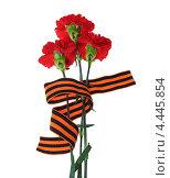 Купить «Три гвоздики с георгиевской лентой. 9 мая», эксклюзивное фото № 4445854, снято 23 марта 2013 г. (c) Юрий Морозов / Фотобанк Лори