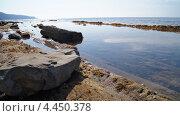 Берег Черного моря на диком пляже. Стоковое фото, фотограф Денис Сураев / Фотобанк Лори